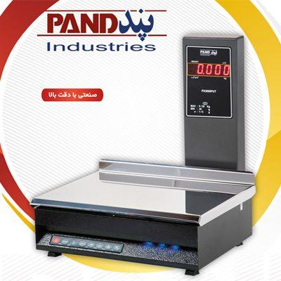 ترازوی ساده پند PX3000